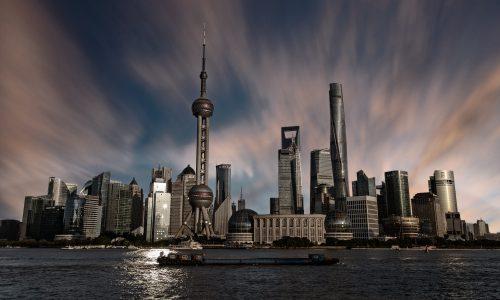 Stegia Shanghai